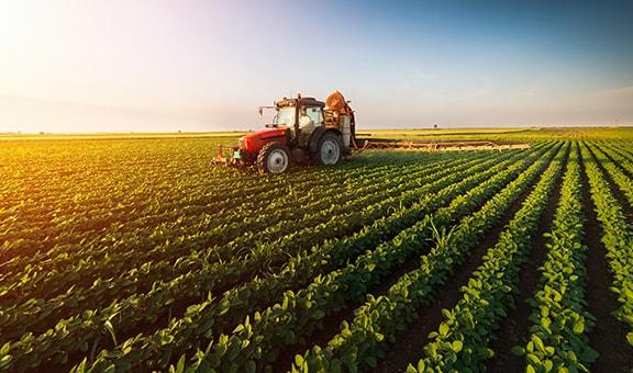 Maataloustarvikkeet